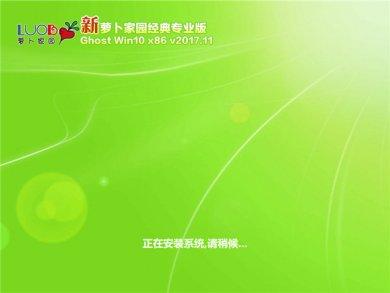 新萝卜家园u盘装windows10下载32位经典专业版 v2017.11