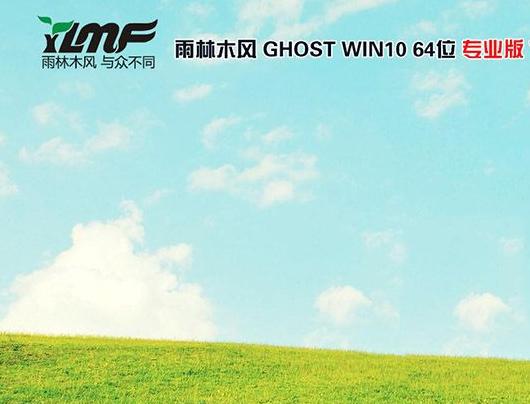 雨林木风Win10 64位完美稳定企业版v2019.12