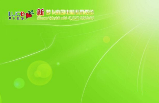 新萝卜家园win10专业版64位系统V2020.04