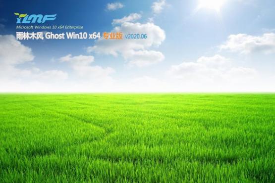 雨林木风 ghost win10 专业版 64位 系统 V2020.06